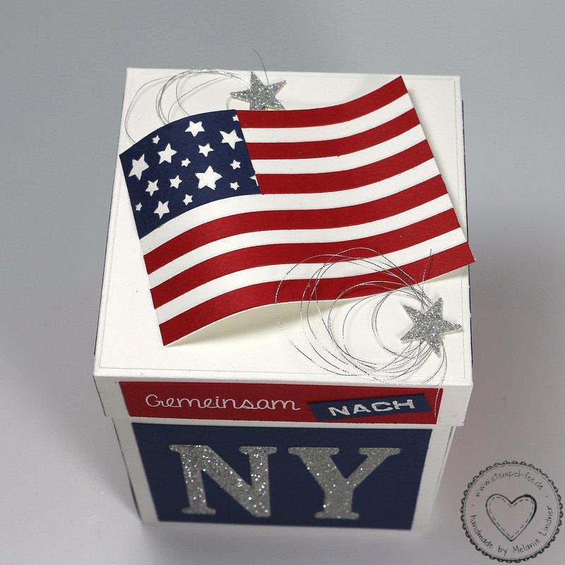 amerika von oben new york